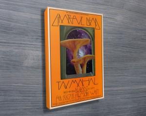 Mushroom Man Concert Poster