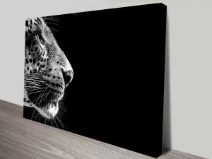 Stare of the Leopard Canvas Prints Australia
