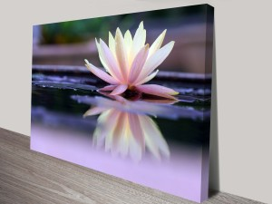 Floating Beauty Artwork on Canvas