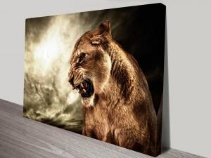 Angry Tiger-s