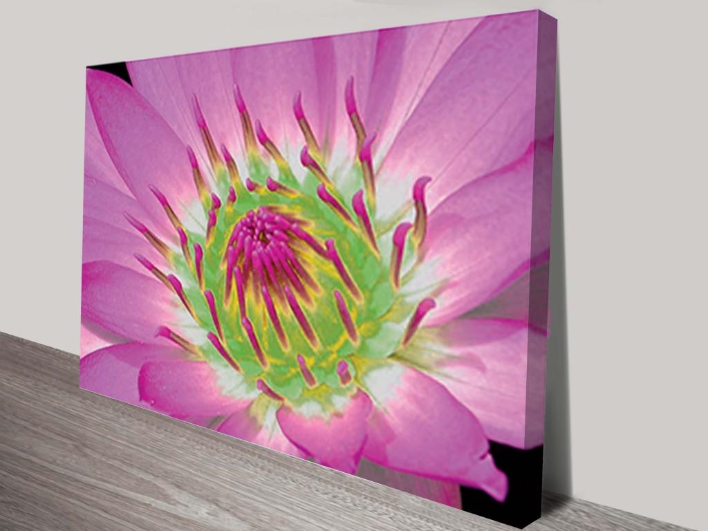 Pink Close Up Floral Canvas Art Print