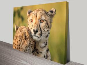 protective mother cheetah wall art canvas print