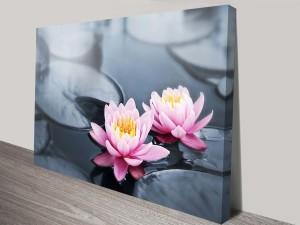 floating lotus flowers wall art canvas prints