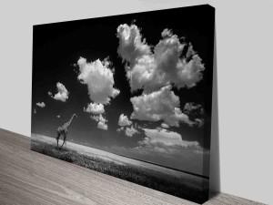cloudy-giraffe-cheap-wall-art-canvas-photo-print