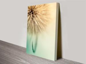 dandy dandelion floral artwork custom prints