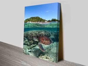 serene sea turtle custom photo to canvas
