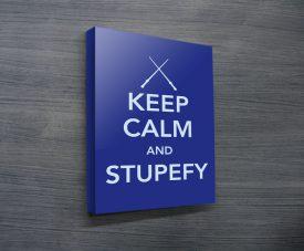 Stupify Keep Calm Poster