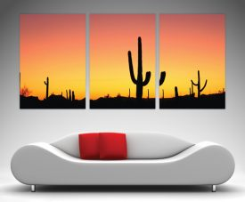Arizona Triptych Art