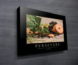 Persevere Motivational Business Art