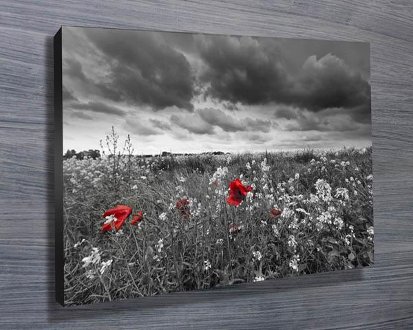 art field red - photo #24