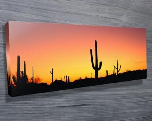 Arizona Panoramic