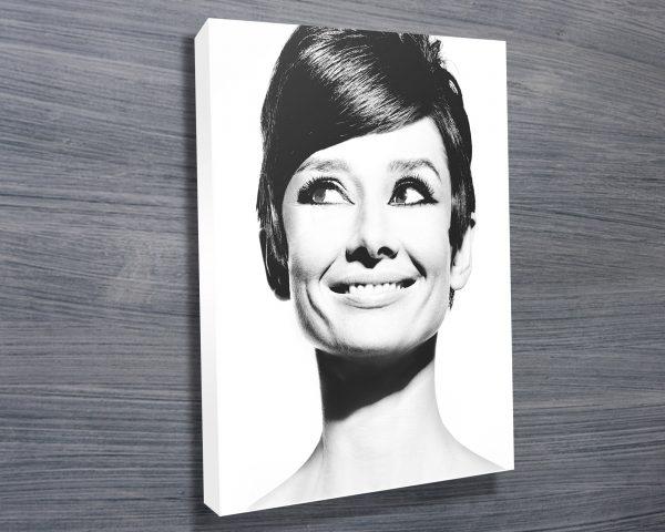 Audrey Hepburn pop art 4