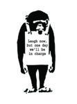 Banksy Monkey Canvas Art Picture Australia