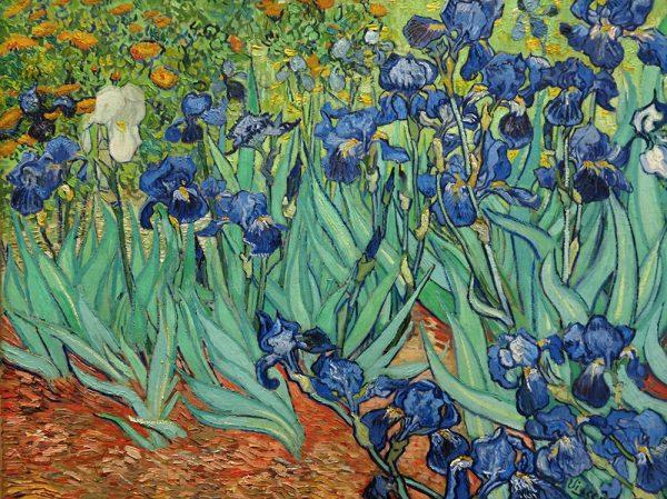 Irises by Vincent Van Gogh Framed Wall Art