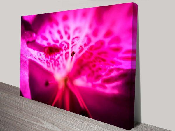 Orchid Spring Burst Floral Art Print