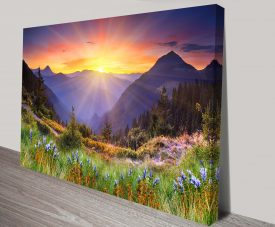 Pink Fields Canvas Print Australia