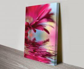 Pink Reflections Floral Art Canvas Print Australia