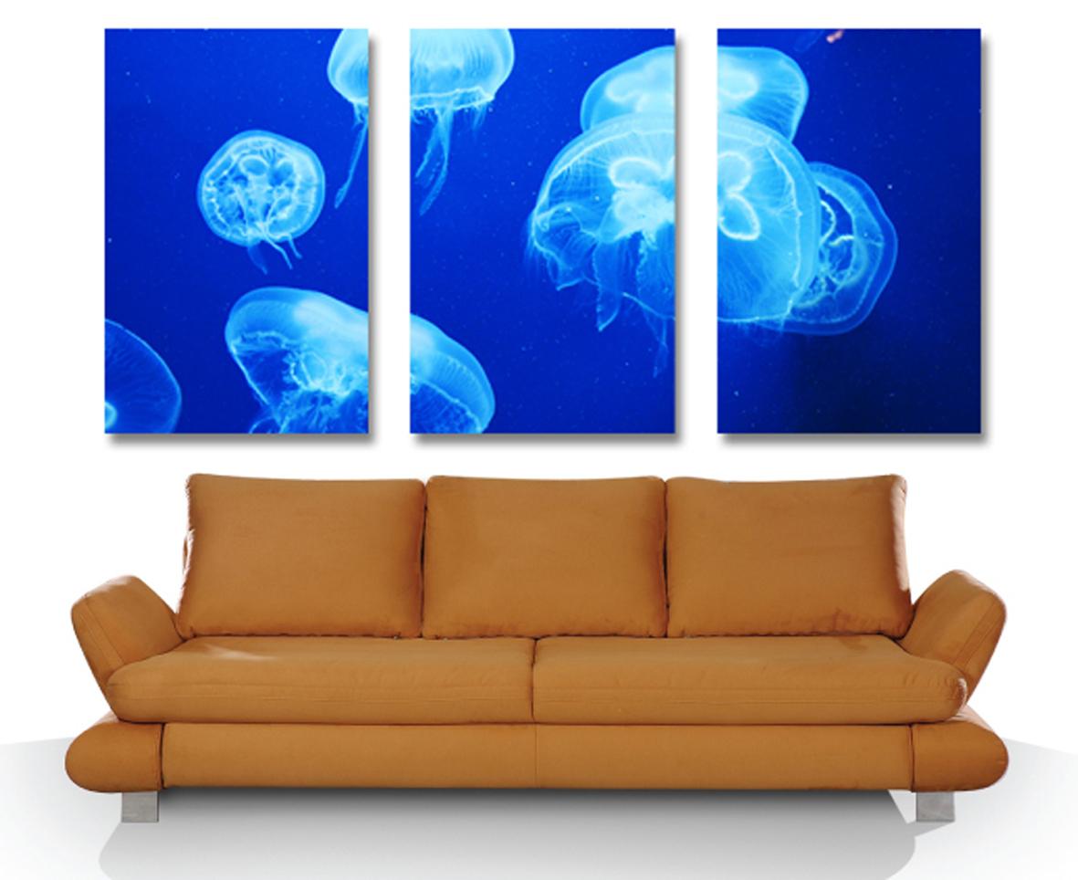 Jellyfish Triptych Art - Canvas Prints Australia