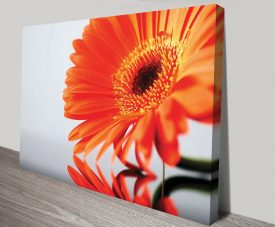 Orange Splash Floral Artwork on Canvas