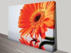 Orange Splash Floral Artwork on Canvas