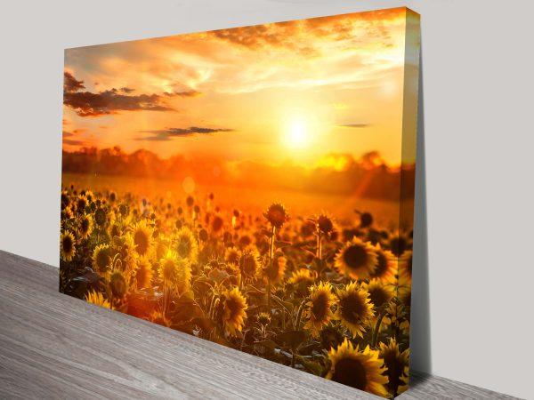 Sunflower Fields Wall Canvas Art Print