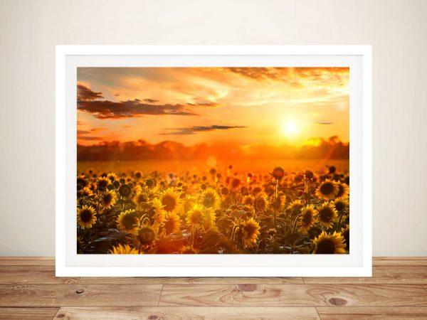 Sunflower fields Framed Wall Art