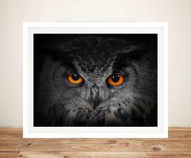 Eyes of the Owl Framed Wall Art