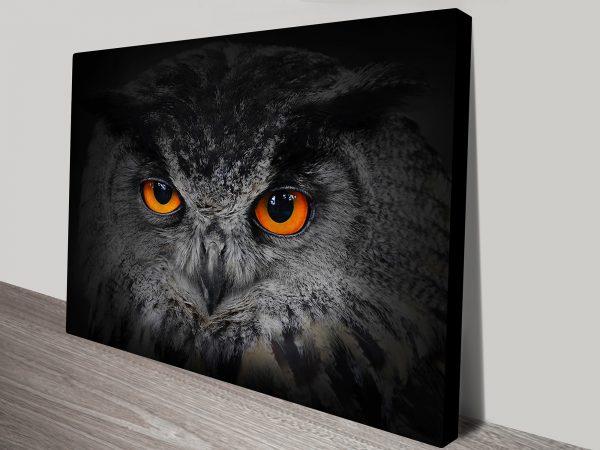 Eyes of the Owl Canvas Art Prints