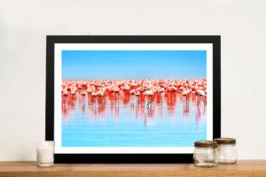 Flamingos Framed Wall Art