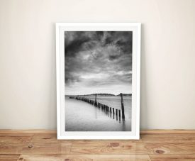 Black And White Framed Wall Art Beach Bones