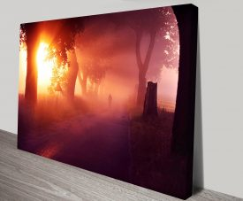 Sunset Lane Canvas Prints Australia