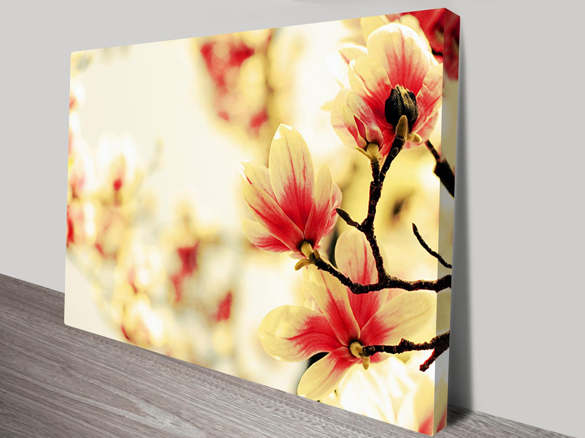 The Flower Blossoms Floral Canvas Print Australia
