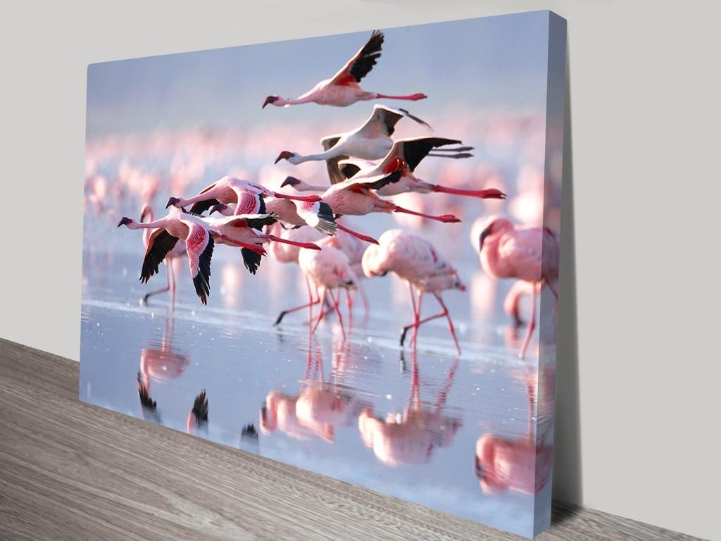 Flamingos In Flight Wall Art