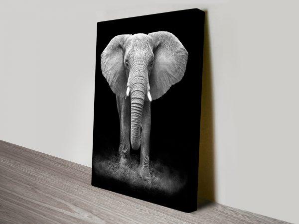 Gentle Giant Canvas Prints Australia