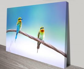 Two Kingfishers Wildlife Wall Art on Canvas