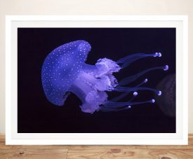 Framed Jellyfish Magical Print on Canvas