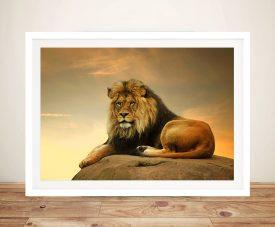 Majestic Lion Framed Wall Art