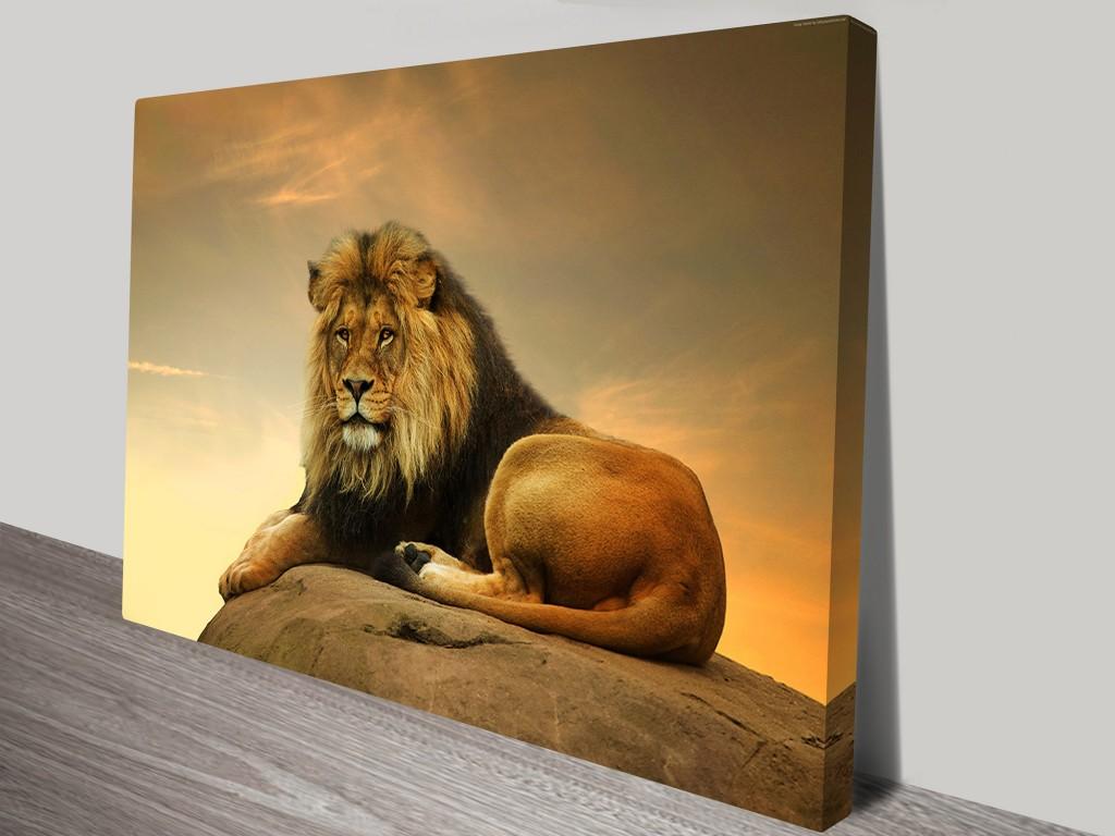Majestic Lion Art On Canvas