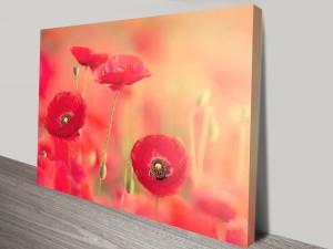 Poppy Glaze Canvas Wall Art