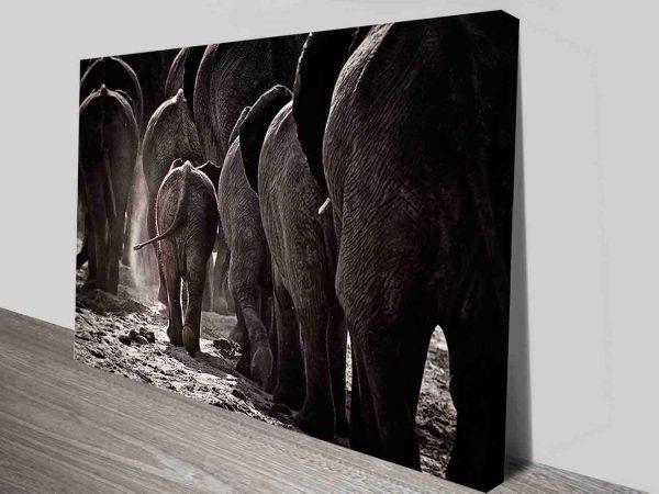elephant herd canvas wall art print