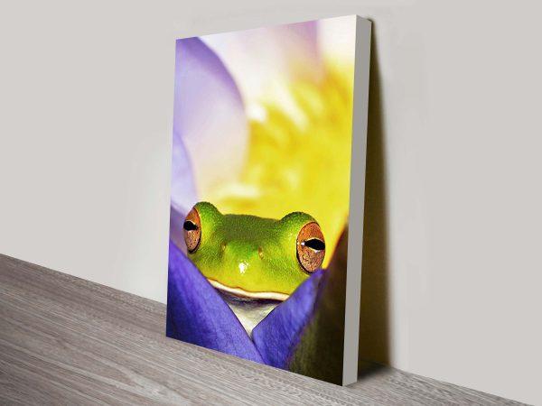 peeping tree frog wall art canvas print