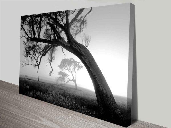 trees at sunrise canvas wall art print