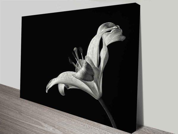 monochrome lily canvas print wall art
