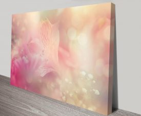 pale orchid bloom canvas wall art print