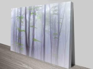 dream trees photo custom print online
