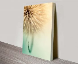 dandy dandelion floral artwork custom prints