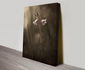 beautiful bellflower custom floral online print