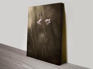 beautiful bellflower custom floral online print