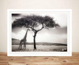 Shaded Giraffe Framed Wall Art
