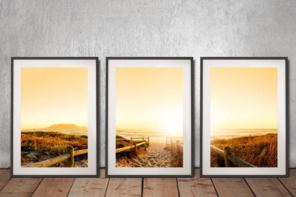 Buy Beach Pathway Wall Art Great Gift Ideas AU